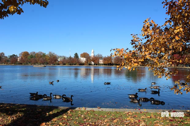 Boat Lake - Byrd Park - Waters in Autumn